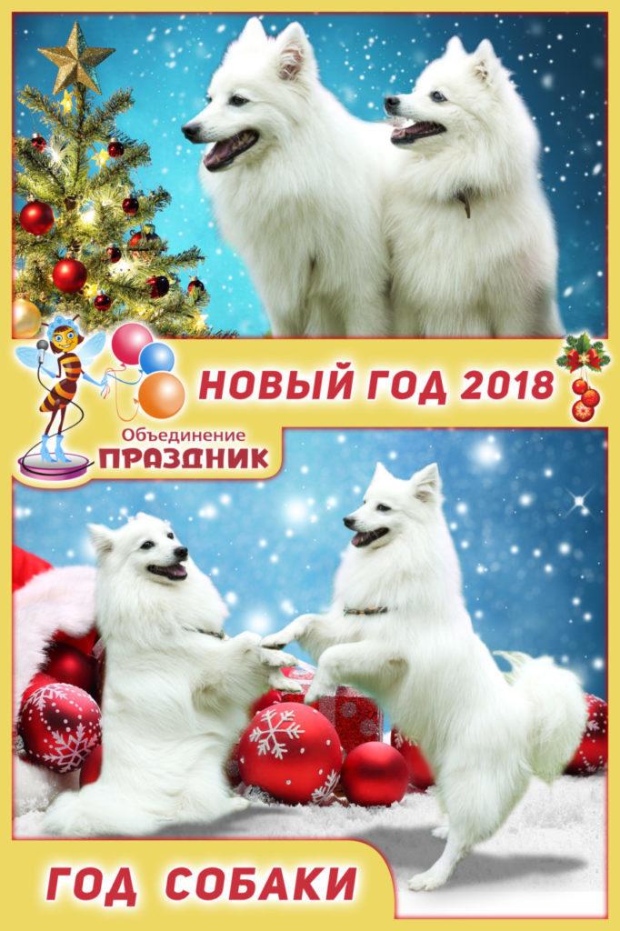 Otkrytka-2018-sobaka-682x1024